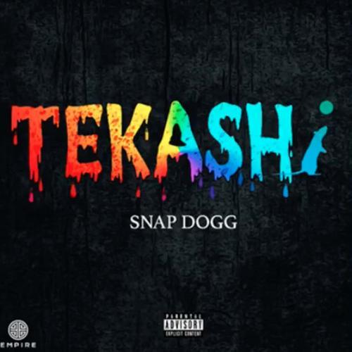 Snap Dogg Tekashi 6ix9ine DIss  - MP3: Snap Dogg - Tekashi (6ix9ine DIss)