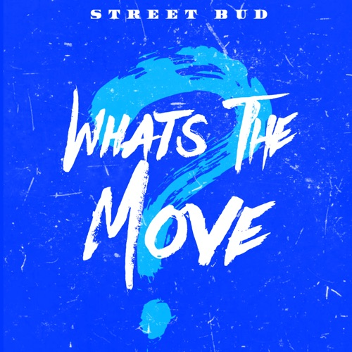 MP3: Street Bud - What's The Move