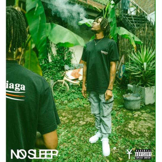 MP3: Youngs Teflon - No Sleep