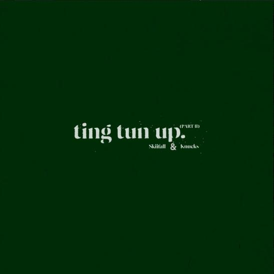 MP3: Skiifall - Ting Tun Up Pt. II Ft. Knucks