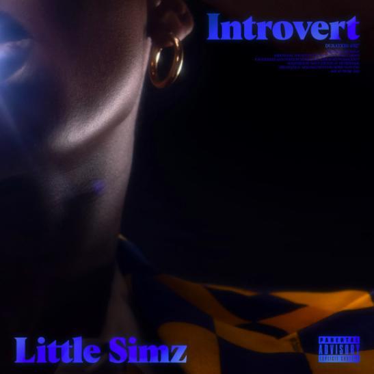 MP3: Little Simz - Introvert