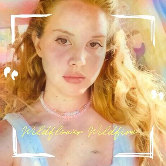 MP3: Lana Del Rey - Wildflower Wildfire