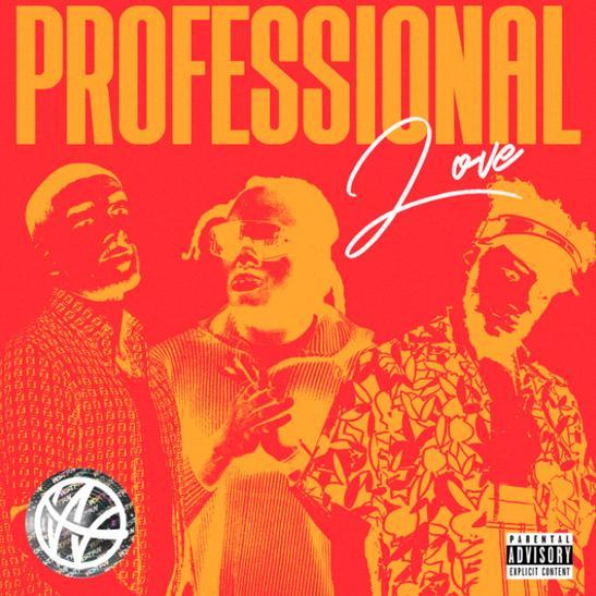 MP3: WSTRN - Professional Love